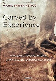 rsz_carved_by_experience